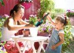 Buitenzitseizoen van start: Even aan de slag en… een zomer lang genieten