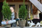 Plant van de maand februari: Geniet van levensboom
